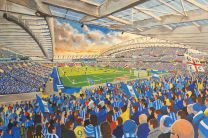 Amex Stadium Fine Art Print - Brighton & Hove Albion Football Club