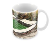 Gigg Lane Stadia Fine Art Ceramic Mug - Bury Football Club