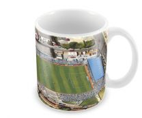 Goldstone Ground Stadia Fine Art Ceramic Mug - Brighton & Hove Albion Football Club