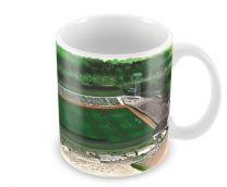 Home Park Stadia Fine Art Ceramic Mug - Plymouth Argyle Football Club
