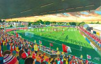 Kingfield Stadium Fine Art Print - Woking Football Club