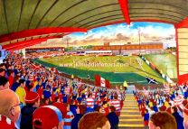 New Douglas Park Stadium Fine Art Print - Hamilton Academicals Football Club