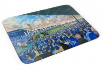 Ninian Park Stadium Fine Art Mouse Mat - Cardiff City Football Club