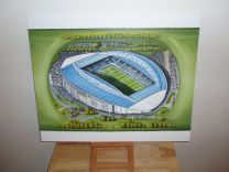 Amex Stadium Fine Art Original Oil Painting - Brighton & Hove Albion Football Club