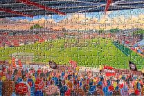 St James' Park Stadium Fine Art Jigsaw Puzzle - Exeter City Football Club